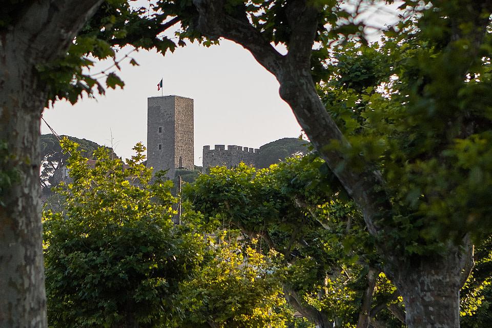 La Tour du Suquet au soleil couchant vue au travers des platanes de la promenade de la Pantiero