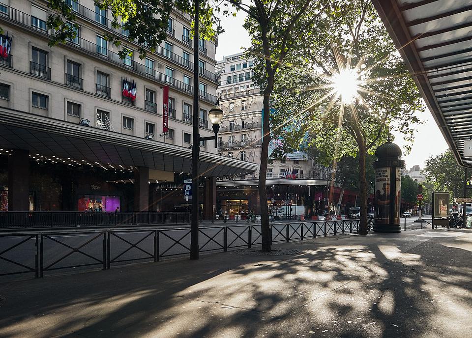 Le soleil brille entre les platanes devant les Galeries Lafayette